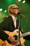 Andy Fairweather Low in Concert Royalty Free Stock Photography