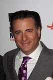 Andy Garcia Royalty Free Stock Image