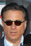 Andy Garcia arrives at the  Royalty Free Stock Photography