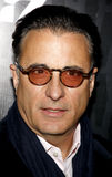 Andy Garcia Royalty Free Stock Images