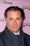 Andy Garcia, Tarina Tarantino Photos stock