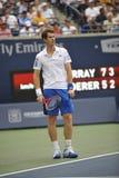 Andy Murray на чашке Rogers стоковое фото rf