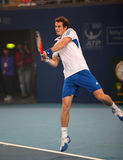 Andy Murray Photo libre de droits