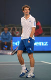 Andy Murray Arkivbilder
