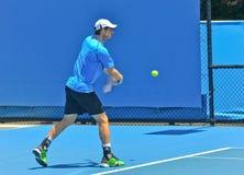 Andy Murray bawić się w australianie open Fotografia Stock