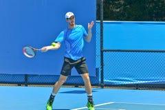 Andy Murray bawić się w australianie open Zdjęcia Stock