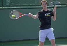 Andy Murray Practicing 3 Royalty Free Stock Image