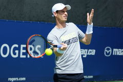 Andy Murray (GBR) Fotos de Stock Royalty Free