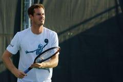 Andy Murray (GBR) Στοκ εικόνα με δικαίωμα ελεύθερης χρήσης