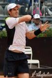 Andy Murray (GBR) Στοκ φωτογραφίες με δικαίωμα ελεύθερης χρήσης