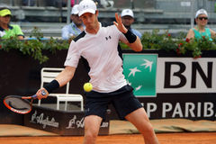 Andy Murray (GBR) Arkivfoto