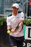 Andy Murray (GBR) Στοκ φωτογραφία με δικαίωμα ελεύθερης χρήσης