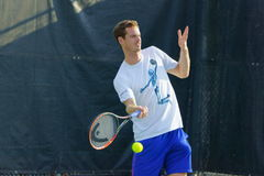 Andy Murray (GBR). MONTREAL, QUEBEC, CANADA - AUGUST 14, 2015: Andy Murray (GBR) during practice at Coupe Rogers in Montreal on August 14, 2015 Stock Photos