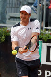 Andy Murray (GBR). ROME, ITALY - MAY 11, 2016: Andy Murray (GBR) during his match against Mikhail Kukushkin (KAZ)  at the Internazionali BNL d'Italia in Rome Royalty Free Stock Photo