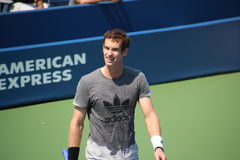 Andy Murray Stock Image