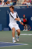 Andy Murray Rogers Cup 2008 (29) Royalty-vrije Stock Afbeelding