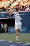 Andy Murray Rogers Cup 2008 (34) Royalty Free Stock Photography