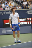 Andy Murray at Rogers Cup Royalty Free Stock Photo