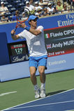 Andy Olympic van Murray kampioen (4) royalty-vrije stock foto's