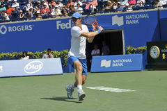 Andy Olympic van Murray kampioen (5) stock foto