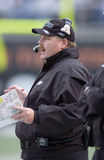 Andy Reid. Philadelphia Eagles head coach Andy Reid.  (image taken from color slide Stock Photo