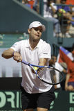 Andy Roddick Royalty Free Stock Photo