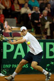 Andy Roddick Royalty Free Stock Photos