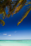 Anegada Explorations Royalty Free Stock Photography