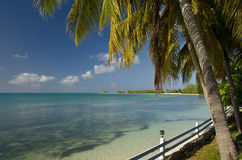 Anegada island coast Royalty Free Stock Photography