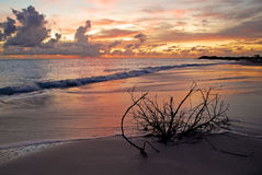 Anegada Sunset Stock Photos