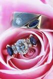Aneis de noivado em Rosa Fotografia de Stock