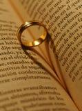 anel Imagem de Stock