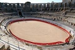 Anel de Bull em Colisseum romano imagem de stock