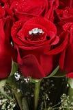 Anel de diamante em uma rosa imagem de stock royalty free