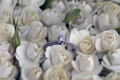 Anel de noivado nas rosas brancas fotografia de stock