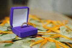 Anel de prata da joia Foto de Stock Royalty Free