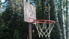 Anel do basquetebol no parque entre o close-up das árvores filme