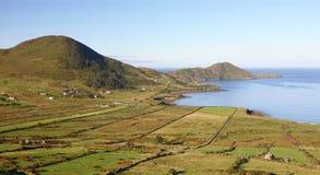 Anel do Kerry Fotos de Stock Royalty Free