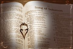 Anel e Bíblia de casamento Imagem de Stock