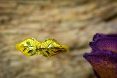 Anel e rosas secas obscuras na textura de madeira, amor seco no Valentim, foco seleto Foto de Stock