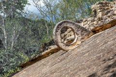 Anel maia na parede de pedra, Coba do jogo de futebol arqueológico Imagens de Stock