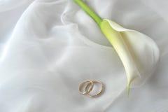 Anelli bianchi di cerimonia nuziale e del tessuto Immagini Stock