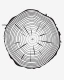 Anelli del tronco Fotografia Stock