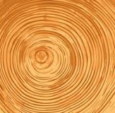 Anelli di albero Immagine Stock Libera da Diritti