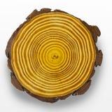 Anelli di albero Fotografia Stock