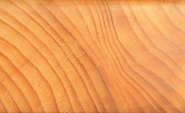 Anelli di anno dell'albero Fotografie Stock