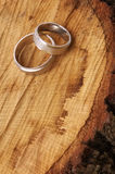Anelli di cerimonia nuziale immagine stock