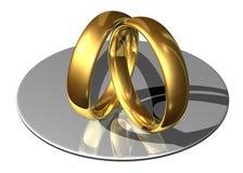 Anelli di cerimonia nuziale dorata che si appoggiano faccia a faccia Fotografie Stock Libere da Diritti