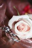 Anelli di cerimonia nuziale e della Rosa Fotografia Stock Libera da Diritti