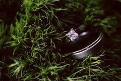 Anelli di cerimonia nuziale in erba fotografie stock
